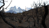 CHILE-FIRE-ENVIRONMENT-TOURISM-TORRES DEL PAINE