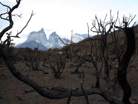 CHILE-FIRE-ENVIRONMENT-TOURISM-TORRES DEL PAINE