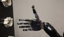 tetrapejia-logra-mover-brazo-robotico
