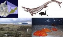 universidad-de-chile-investigacion-marina