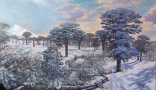 araucarias-en-la-nieve-2-Mauricio Leseigneur